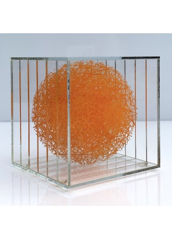 Monyalos Orange Sébastien Crêteur
